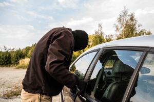 El negocio de los autos robados