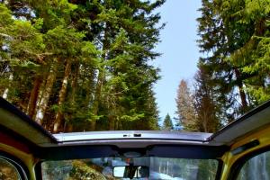 Viaja en low cost: comparte auto y llega más lejos